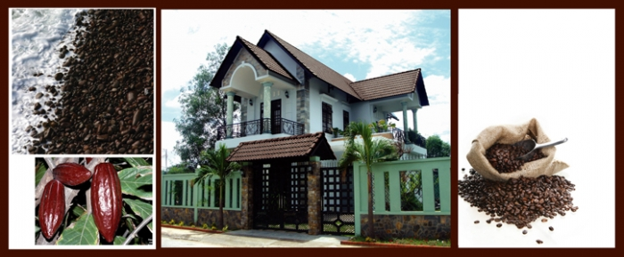 Ngói màu Đồng Tâm MS NLN605 - Giá Tốt eNoiThat