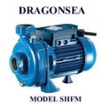 Máy bơm nước Dragonsea SHFm