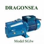 Máy bơm nước Dragonsea SGJW