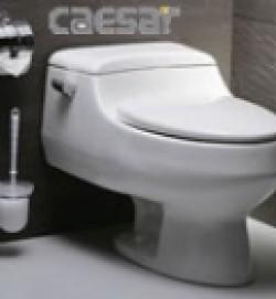 Bàn cầu Caesar C1358