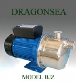 Máy bơm nước Dragonsea BJZ